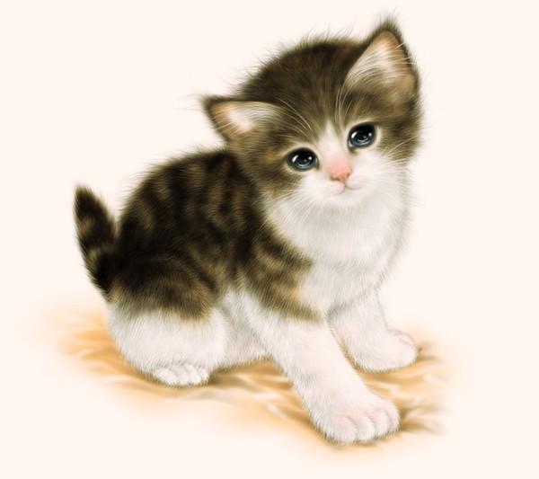 この回では、ペンタブレットを使った色付き猫絵の